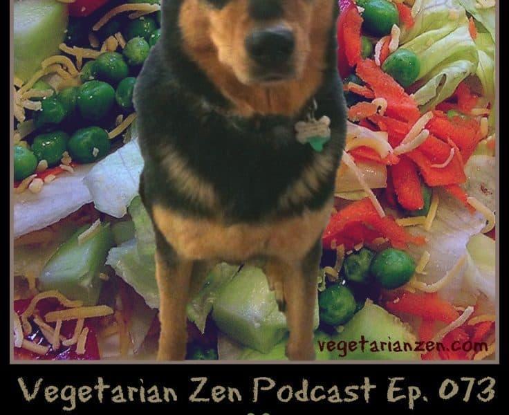 VZ073 - You can feed your pet a vegetarian diet...but should you https://www.vegetarianzen.com