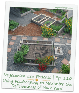 Vegetarian Zen podcast episode 110 - Using Foodscaping to Maximize the deliciousness of your yard http://www.vegetarianzen.com