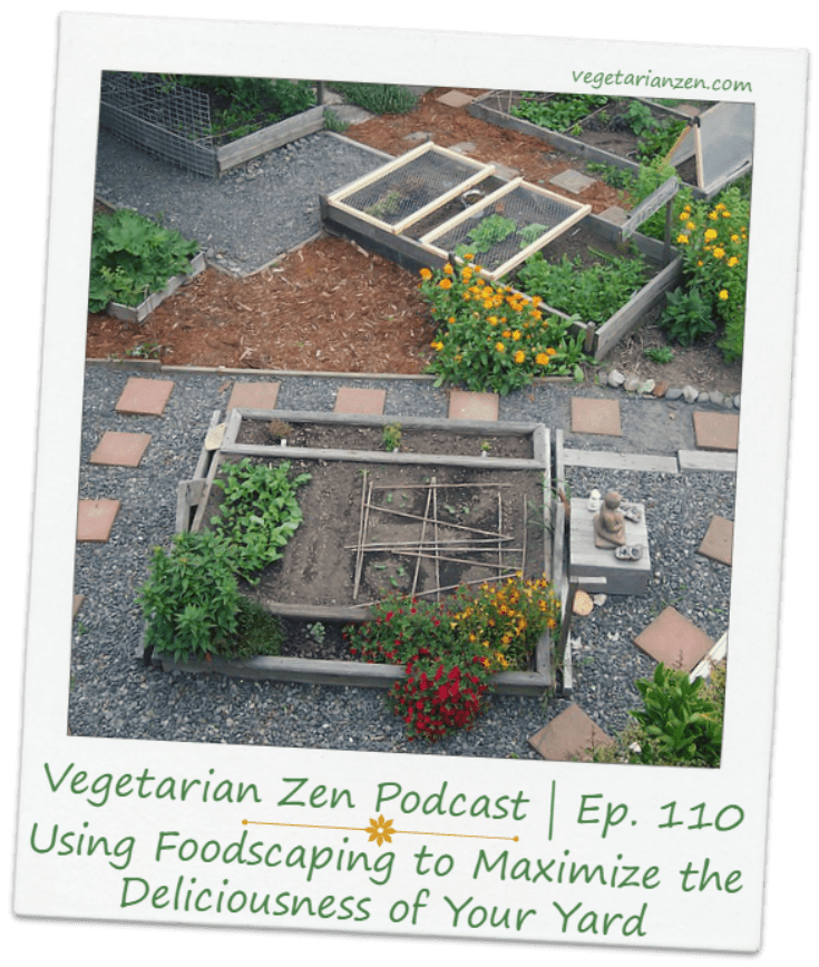 Vegetarian Zen podcast episode 110 - Using Foodscaping to Maximize the deliciousness of your yard https://www.vegetarianzen.com