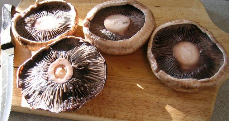 portobello mushrooms https://www.vegetarianzen.com