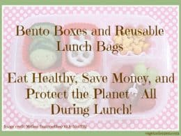 Bento boxes and reusable lunch bags https://www.vegetarianzen.com
