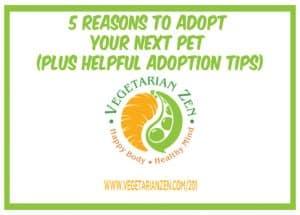 Vegetarian Zen podcast 5 reasons to adopt your next pet plus adoption tips