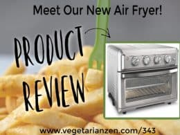 air fryer and fries