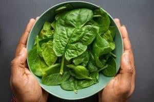 spinach for spinach enchiladas