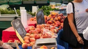 farmers market tips get the lay of the land