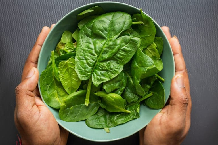 bowl of spinach for spinach enchiladas